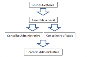 organograma-cooperativa-camponesa